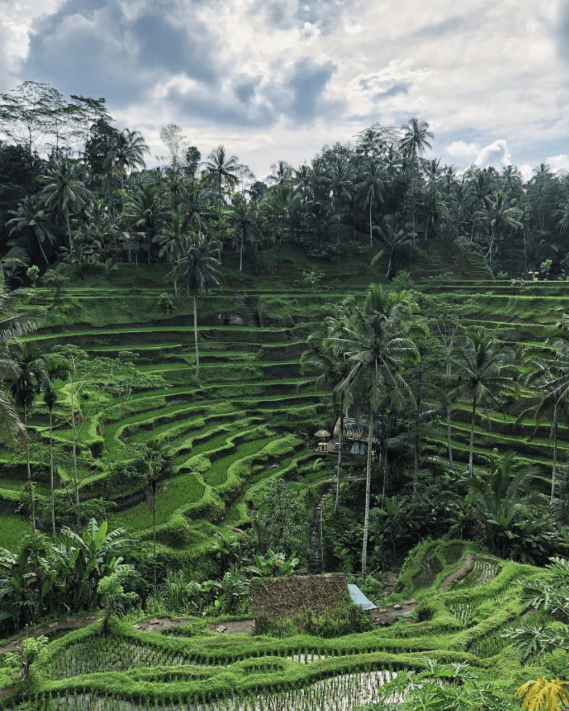 One Month Bali Itinerary For Backpackers